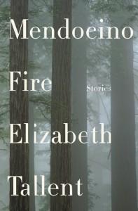 Mendocino Fire (394x600)